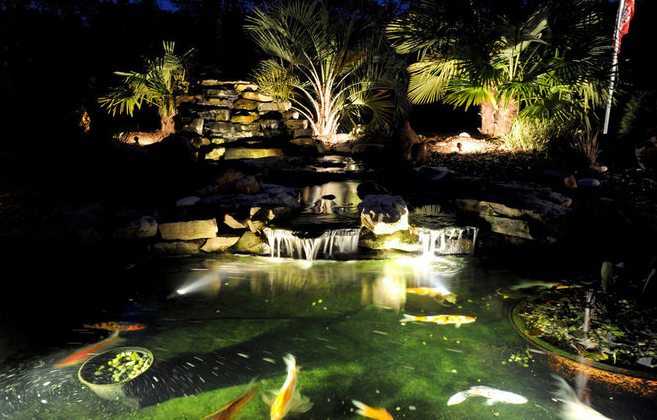 koi-pond-lighting